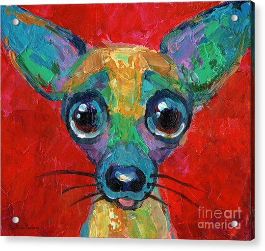 Colorful Pop Art Chihuahua Painting Acrylic Print