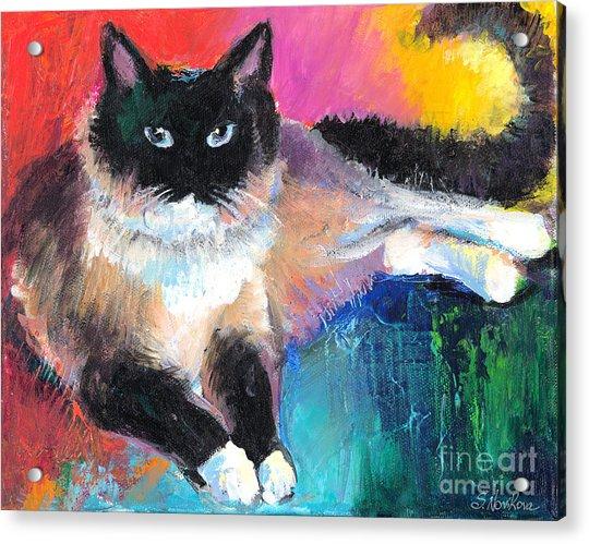 Colorful Ragdoll Cat Painting Acrylic Print