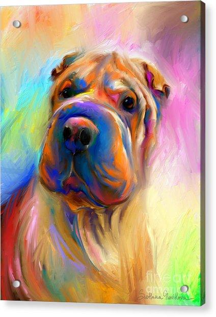 Colorful Shar Pei Dog Portrait Painting  Acrylic Print