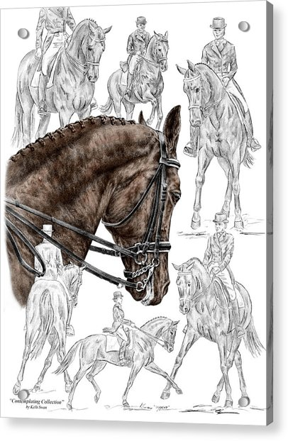 Contemplating Collection - Dressage Horse Print Color Tinted Acrylic Print