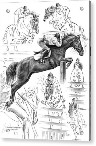 Contemplating Flight - Jumper Horse Drawing Acrylic Print