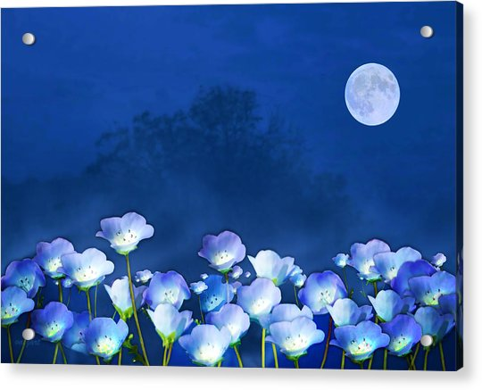 Acrylic Print featuring the mixed media Cornflowers In The Moonlight by Valerie Anne Kelly