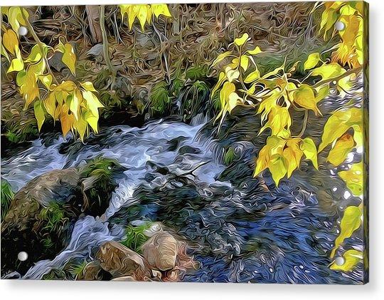 Creek And Aspen Leaves By Frank Lee Hawkins Acrylic Print