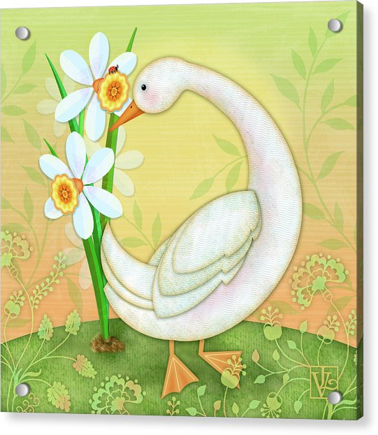 D Is For Duck And Daffodils Acrylic Print