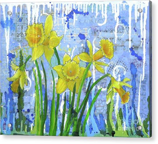 Daffodil Ding Dongs Acrylic Print