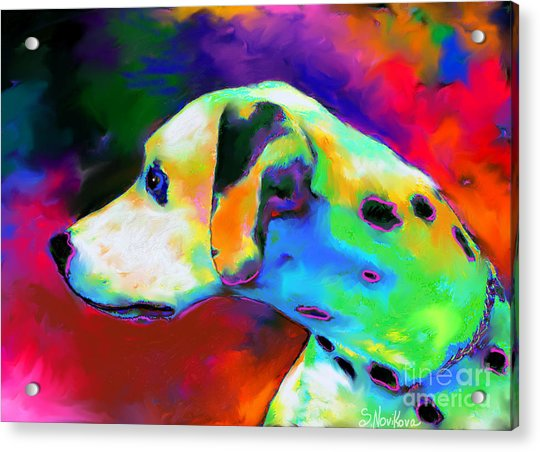 Dalmatian Dog Portrait Acrylic Print