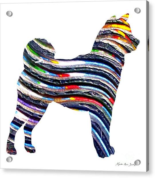 Decorative Husky Abstract O1015b Acrylic Print