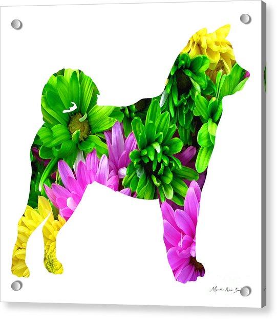 Decorative Husky Abstract O1015d Acrylic Print