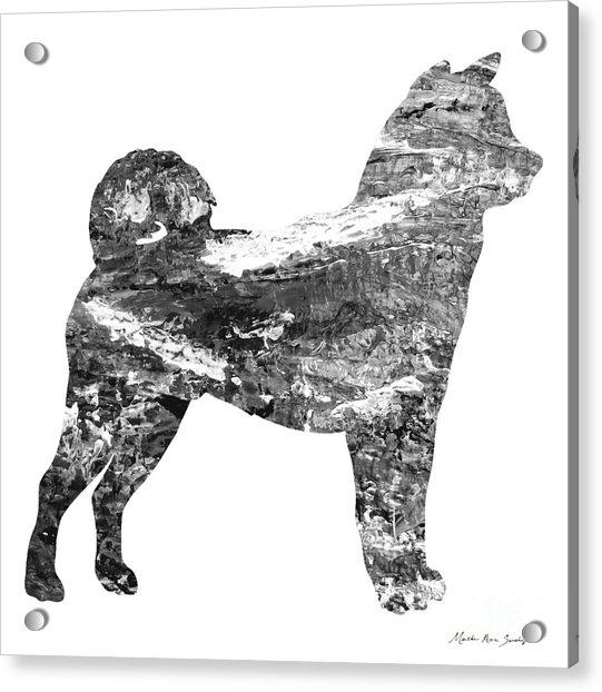 Decorative Husky Abstract O1015j Acrylic Print