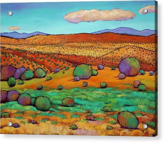 Desert Day Acrylic Print