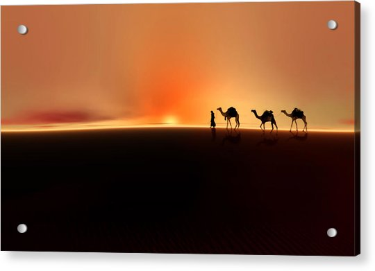 Acrylic Print featuring the photograph Desert Mirage by Valerie Anne Kelly