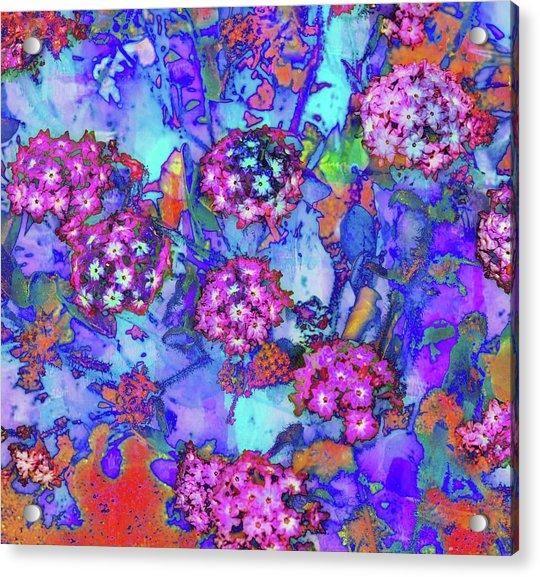 Desert Vibe Bloom Acrylic Print