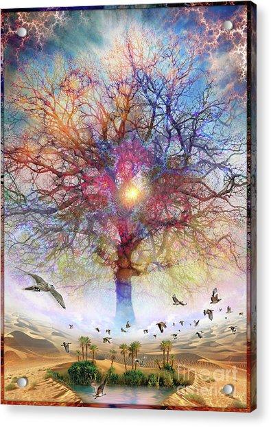 Dessert Of Forgotten Tree Acrylic Print