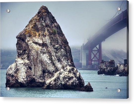 Determined To Rout Her Way Out Of This Fog Acrylic Print