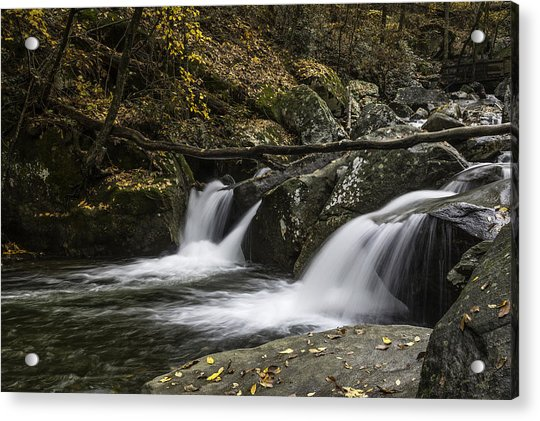 Double Flow Acrylic Print