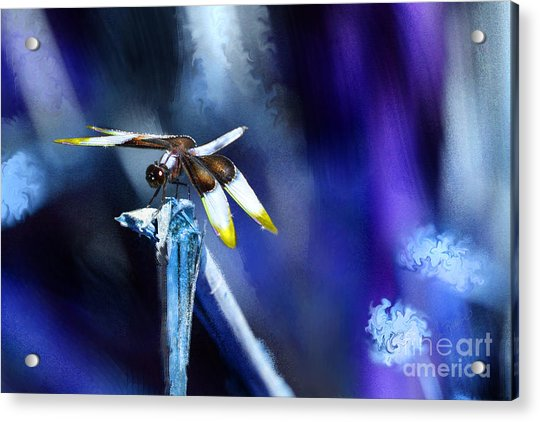 Dragonfly In The Blue Acrylic Print