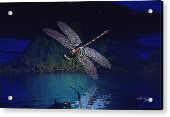 Dragonfly Night Reflections Acrylic Print