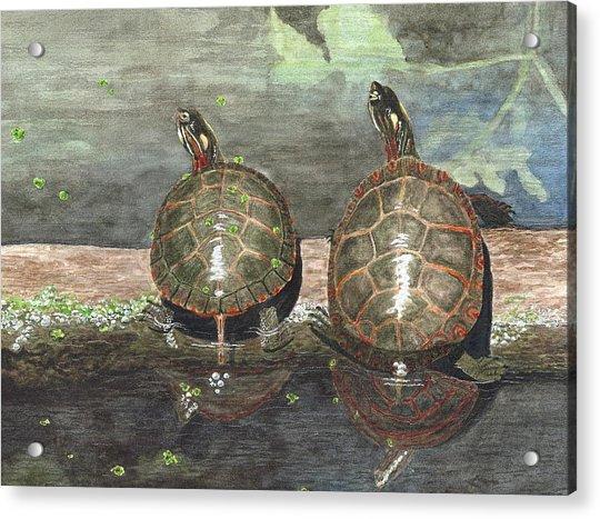 Dynamic Duo Acrylic Print