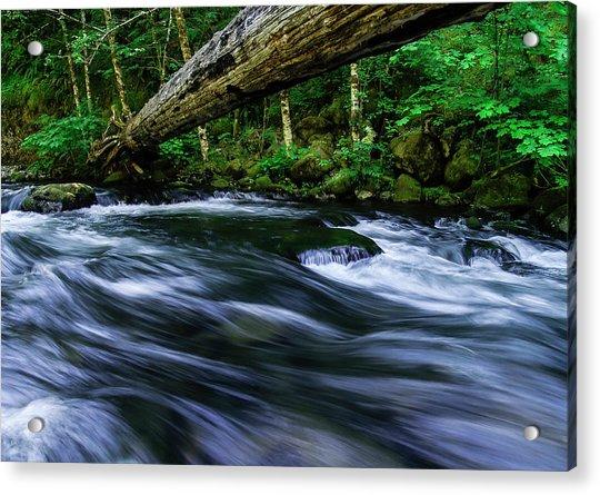 Eagle Creek Rapids Acrylic Print