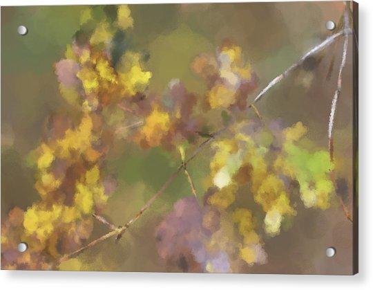 Early Fall Leaves Acrylic Print
