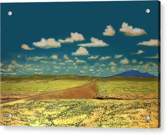 East Of Flagstaff Arizona Acrylic Print