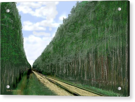 East Texas Pine Cut Acrylic Print