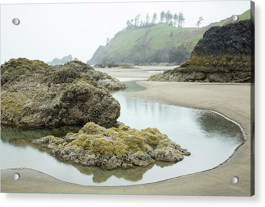 Acrylic Print featuring the photograph Ecola Tidepool by Tim Newton