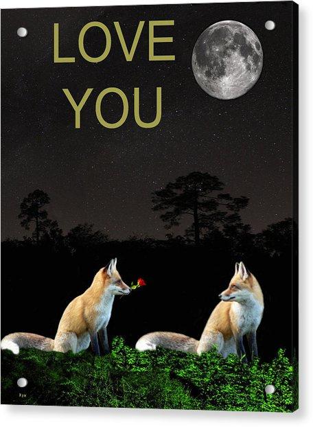 Eftalou Foxes Love You Acrylic Print