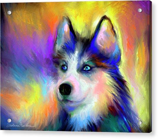 Electric Siberian Husky Dog Painting Acrylic Print