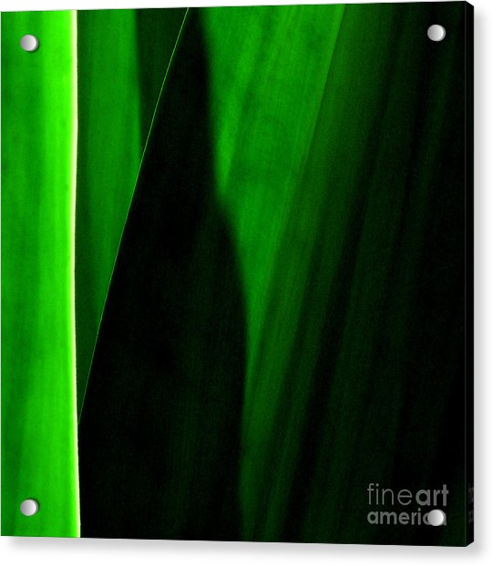 Emerald Acrylic Print by James Temple