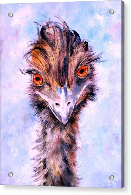 Emu Eyes Acrylic Print