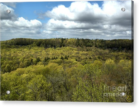 Escarpment Spring 1 Acrylic Print