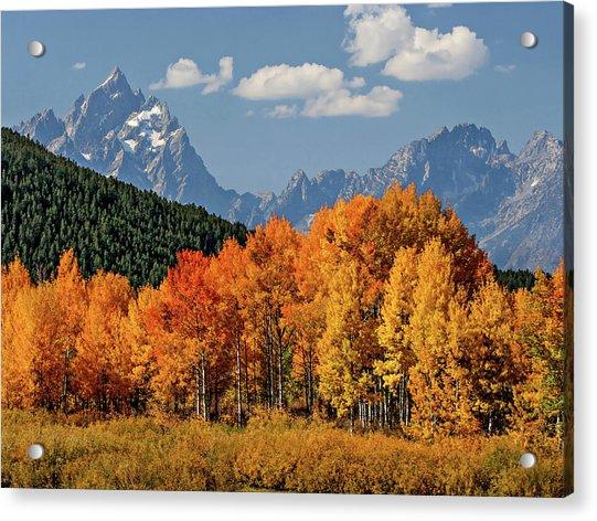Fall In The Tetons Acrylic Print