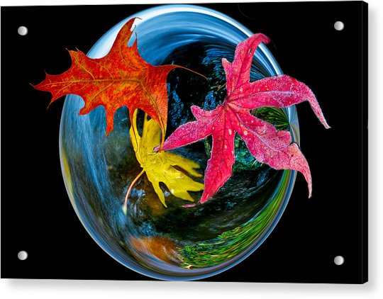 Fall Takes Over Acrylic Print