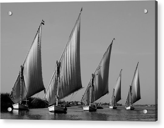 Feluccas On River Nile Acrylic Print