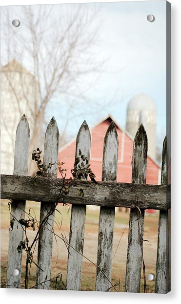Fenceline Acrylic Print