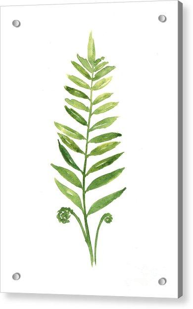 Fern Leaf Watercolor Painting Acrylic Print