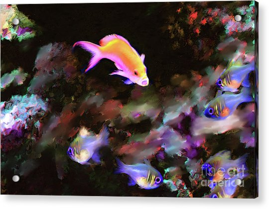 Fiesty Fish Acrylic Print