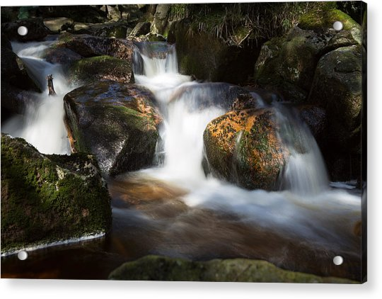 first spring sunlight on the Warme Bode, Harz Acrylic Print