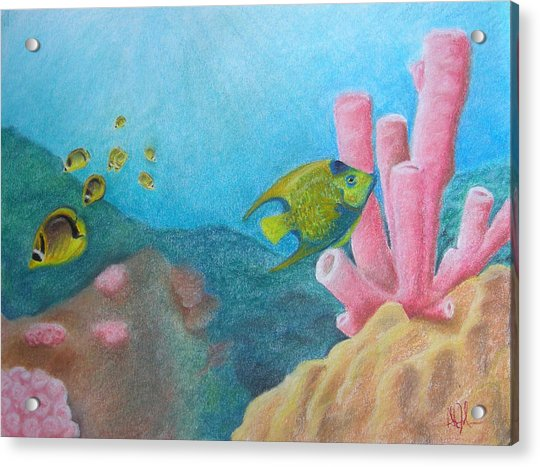 Fish Garden Acrylic Print