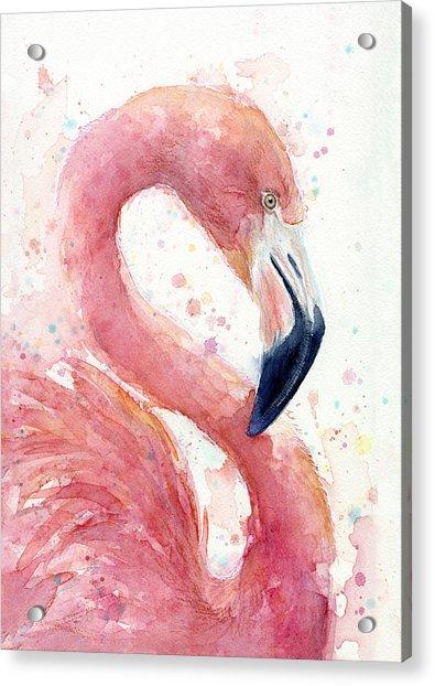 Flamingo - Facing Right Acrylic Print