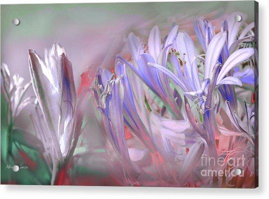 Flores De Verano Acrylic Print