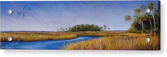 Florida Marsh In June Acrylic Print