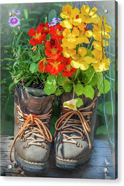 Flower Boots Acrylic Print