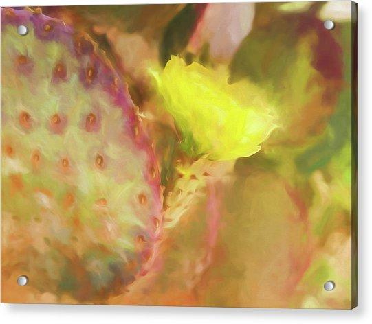 Flowering Pear Acrylic Print