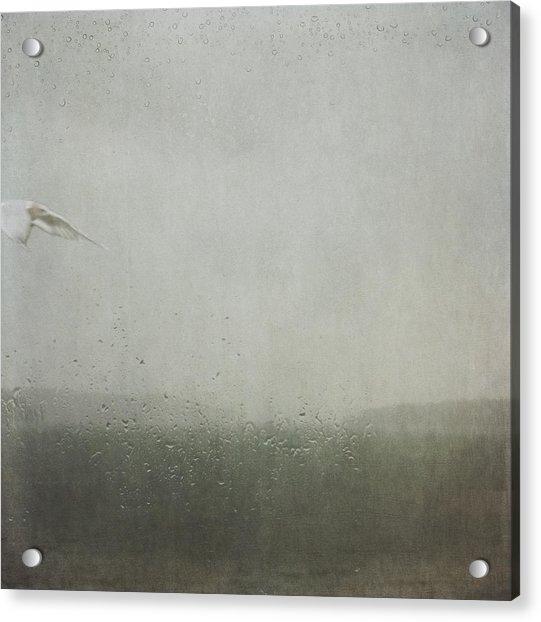 Fly Between The Raindrops Acrylic Print