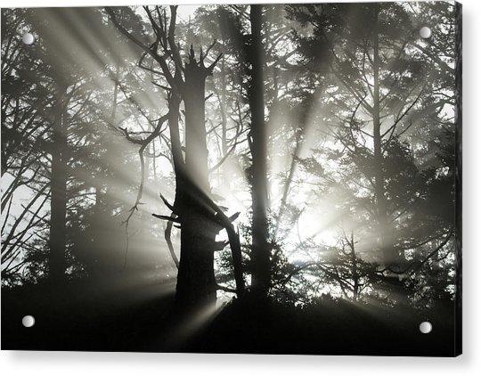 Foggy Flares Acrylic Print