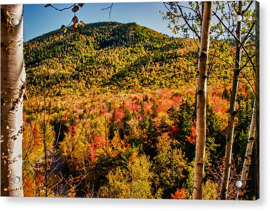 Foliage View From Crawford Notch Road Acrylic Print