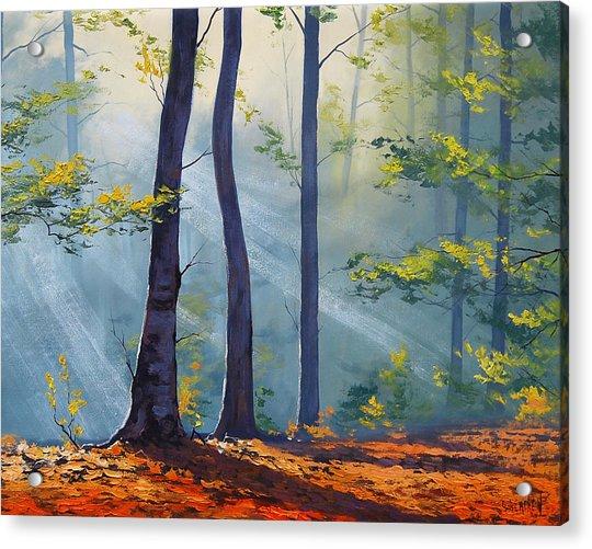 Forest Sunrays Acrylic Print
