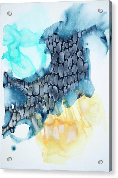 4 Winds - Sirocco Acrylic Print